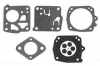 AYP / Craftsman / Sears Diaphragm and Gasket Kit No. 9576H